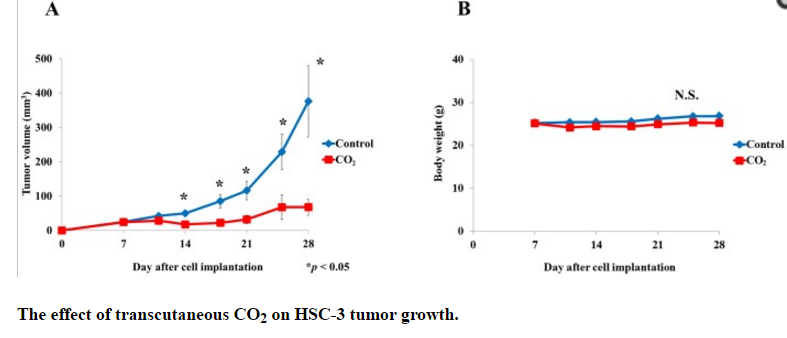 transcutaneous co2 on hsc-3 tumor growth